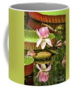 Victoria Cruziana Waterlily Coffee Mug