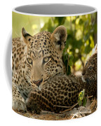 Victoria Falls And Zambezi River Shot Coffee Mug by Jason Edwards