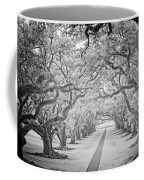 View Down Oak Alley Coffee Mug