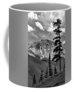 View From Atop Winter Park Mountain 2 Coffee Mug