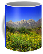 View From Dripping Springs Rd Coffee Mug