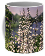 View From The Bridge Of Flowers Coffee Mug
