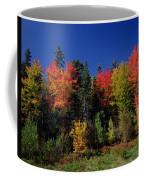 View In The Appalachian Mountains Coffee Mug
