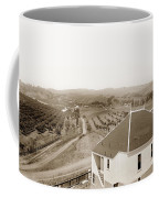 View Of Foothill Orchards. This View Of Orchards In The Foothill Coffee Mug