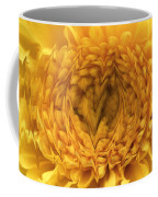 View Within Coffee Mug