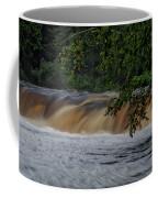 Viewing Tahquamenon Lower Falls Upper Peninsula Michigan 02 Coffee Mug