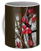 Vignettes - Snow Fruit Coffee Mug