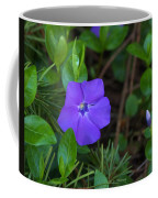 Vinca Blooming In The Forest Coffee Mug