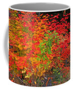 Vine Maple In Oregon Coffee Mug