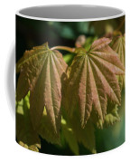 Vine Maple Leaves Coffee Mug