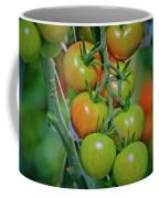 Vine Ripened Rainbows Coffee Mug