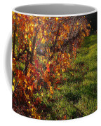 Vineyard 13 Coffee Mug