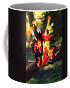 Vineyard 26 Coffee Mug