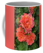 Vineyard Flowers  Coffee Mug