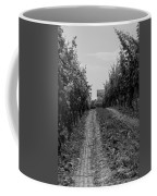 vineyard of old BW Coffee Mug