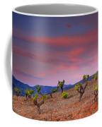 Vineyards At Sunset In Spain Coffee Mug