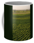 Vineyards In The Mendoza Valley Coffee Mug by Michael S. Lewis