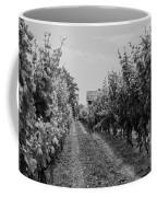 Vineyards Of Old Horizontal Bw Coffee Mug