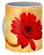 Vintage Gerbera Daisy Coffee Mug
