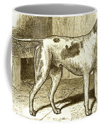 Vintage Sepia German Shorthaired Pointer Coffee Mug