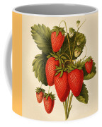Vintage Strawberries Coffee Mug