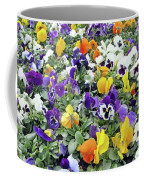 Viola In The Spring Are Especially Beautiful. Coffee Mug