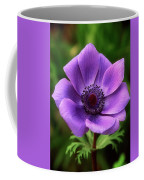 Violet Anemone Coffee Mug