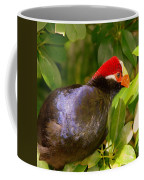 Violet Plantain Eater Coffee Mug