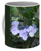 Violets O The Green Coffee Mug