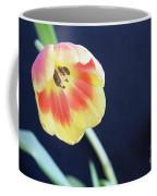 Virgin Beauty Coffee Mug