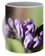 Virginia Bluebell Buds Coffee Mug