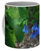Virginia Bluebells In The Early Morning Coffee Mug