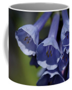Virginia Bluebells Coffee Mug