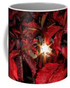 Virginia Creeper Sunburst 2 Coffee Mug