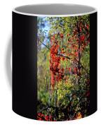 Virginia Creeper Coffee Mug