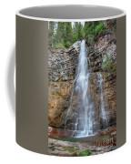 Virginia Falls - Glacier National Park Coffee Mug