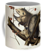 Virginian Opossum Coffee Mug