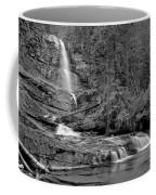 Virgnia Falls Pool - Black And White Coffee Mug