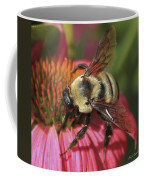 Visitor Up Close Coneflower  Coffee Mug