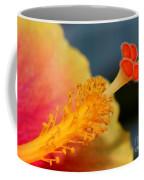 Viva Florida Coffee Mug