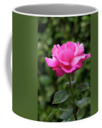 Vivid Pink Rose  Coffee Mug