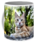 Volterra Italy Cat Watercolor Coffee Mug