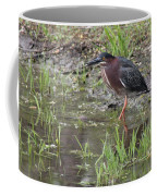 Wading Green Heron Coffee Mug