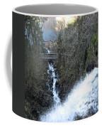 Wah Gwin Gwin Falls 1 Coffee Mug