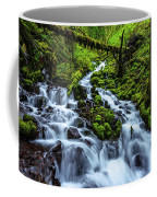 Wahkeena Coffee Mug by Chad Dutson
