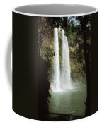 Wailua Falls 3 Coffee Mug