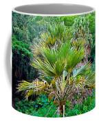 Waimea Palm Study 2 Coffee Mug