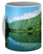 Waipio Valley Stream Coffee Mug