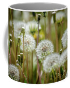 Waiting For A Spring Breeze Coffee Mug