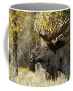Waiting For The Challengers Coffee Mug by Sandra Bronstein